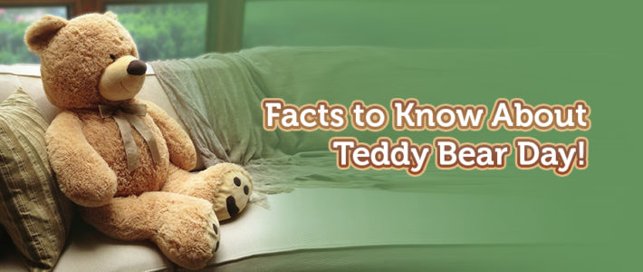 Facts to Know for National Teddy Bear Day