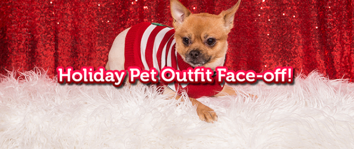 5miles Face-off: Holiday Pet Outfits on 5miles DASH